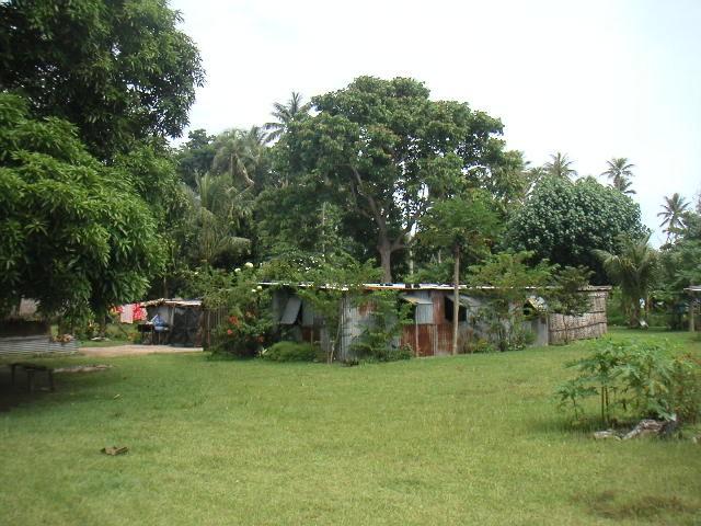 Paunangisu